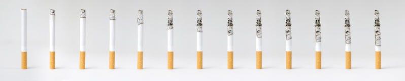Montage av en brinnande cigarett i olika etapper Royaltyfri Fotografi