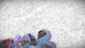 Montage av forskare på arbete stock video