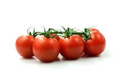 Montage de tomate Photographie stock libre de droits