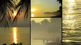 Montage of different clips with typical views of Bali, Indonesia. Tropical videoclips of bali, indonesia. Combined to a clip of tropical impressions stock footage