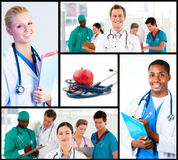 Montage of happy doctors working. In hospital and nutrition concept Stock Photos