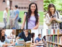Montage med studenter fotografering för bildbyråer