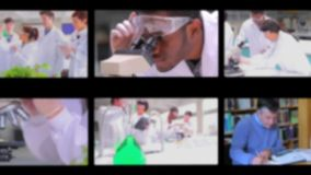 Montage of screens showing scientific scenes stock video
