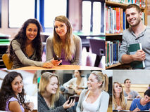 Montage of various pictures showing students in a library Royalty Free Stock Images