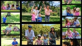 Montage von den Familien, die Spaß im Park haben stock video footage