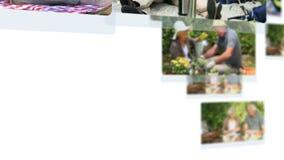 Montage von den reifen Paaren, die zusammen Zeit verbringen stock video footage