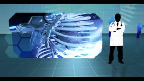 Montage von verschiedenen Körperinnenraumclipn lizenzfreie abbildung