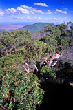 Montagem Archer National Park Australia Fotografia de Stock Royalty Free
