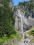 Montagem bonita Rainier National Park das quedas do cometa fotos de stock