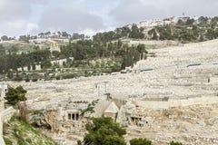 Montagem das azeitonas em Jerusalem fotos de stock