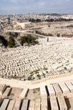 Montagem das azeitonas - Israel Fotografia de Stock Royalty Free