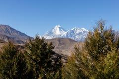 Montagem Dhaulagiri e pico de Tukuche nepal Imagens de Stock