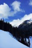 Montagem do inverno Foto de Stock Royalty Free