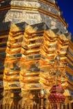 Montagem dourada Fotos de Stock