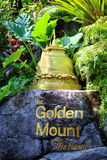 Montagem dourada pequena Imagem de Stock