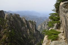 Montagem Huangshan de China Foto de Stock Royalty Free