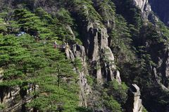 Montagem Huangshan de China Fotografia de Stock Royalty Free