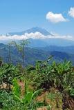 Montagem Kinabalu Fotografia de Stock