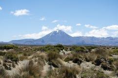 Montagem Ngauruhoe Nova Zelândia Imagem de Stock