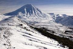 Montagem Ngauruhoe, parque nacional de Tongariro, Nova Zelândia Imagem de Stock Royalty Free