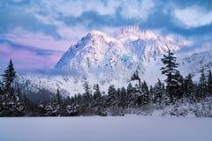 Montagem Shuksan e lago picture no padeiro Wilderness foto de stock royalty free