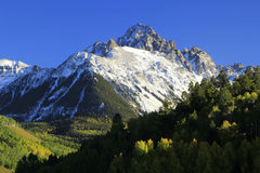 Montagem Sneffels, floresta nacional de Uncompahgre, Colorado fotos de stock royalty free