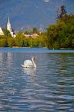 Montagens do esloveno, lago sangrado Foto de Stock