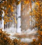 Montaggio mistico della foto del fondo di bello autunno con una betulla Immagine Stock