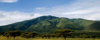 Montagna africana Fotografia Stock