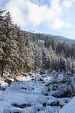 Montagna, alberi e piccolo fiume con neve nell'inverno nelle alpi di Stubai Fotografie Stock Libere da Diritti