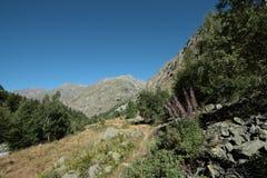 Montagna in alpi, Francia Fotografie Stock