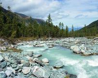 Montagna Altai Il fiume Akkem Immagine Stock Libera da Diritti