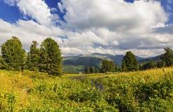 Montagna Altai, Siberia ad ovest dei paesaggi Fotografie Stock Libere da Diritti
