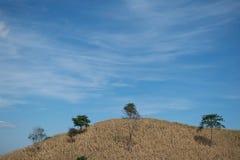 Montagna asciutta con il fondo del cielo blu Fotografie Stock