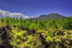 Montagna Batur /Bali-Indonesia/ Fotografia Stock