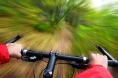 montagna biking Immagine Stock