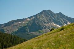 Montagna Bliss Meadows dei campi di erba fotografia stock