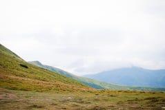 Montagna carpatica, Hoverla Fotografia Stock Libera da Diritti