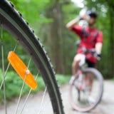Montagna che biking in una foresta Immagine Stock Libera da Diritti