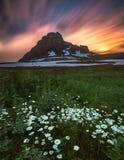 Montagna con i wildflowers e le nuvole di tramonto Fotografie Stock Libere da Diritti