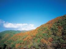 Montagna con il cielo Fotografie Stock