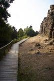 Montagna con il percorso del piede Fotografie Stock Libere da Diritti