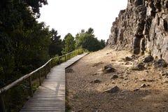 Montagna con il percorso del piede Fotografia Stock Libera da Diritti