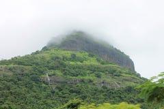 Montagna con le cascate - India Immagine Stock