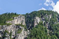 montagna con le rocce e gli alberi Fotografie Stock Libere da Diritti
