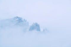 Montagna coperta di nebbia di dence Fotografie Stock Libere da Diritti