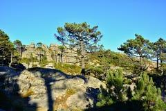 Montagna in Corsica Fotografia Stock Libera da Diritti