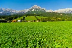 Montagna da Kaisergebirge fotografie stock libere da diritti