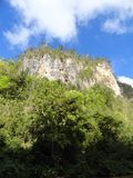 Montagna del canyon del fiume Immagine Stock