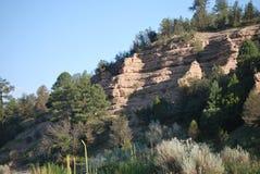 Montagna del deserto con gli alberi Immagine Stock Libera da Diritti
